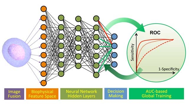 Krebsdiagnosen mit Deep Learning und Photonic Time Stretch